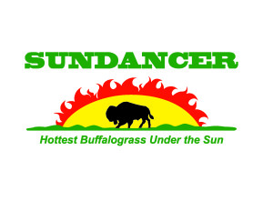 SUNDANCER-HOT